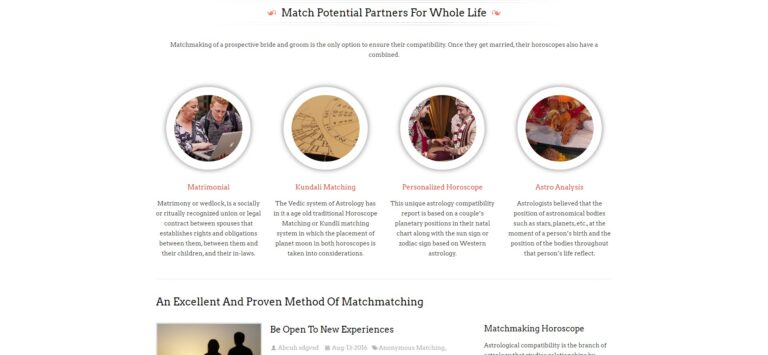 premium astrology wordpress theme